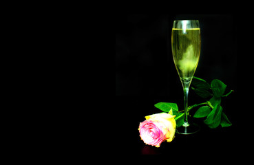 valentine champagne & rose background