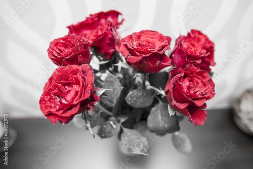 bukiet-kwitnacych-ciemno-czerwone-roze-w-wazonie