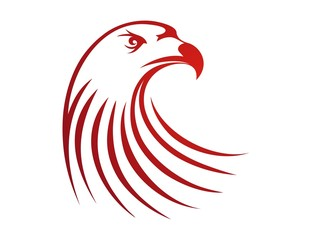 hawk logo,eagle bird silhouette,flying media business