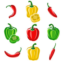 Chili and pepper set. Vector