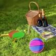 Summer Picnic - 66876367
