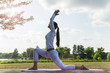 canvas print picture - Pretty woman doing yoga exercises in the park.