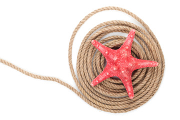 Starfish over ship rope