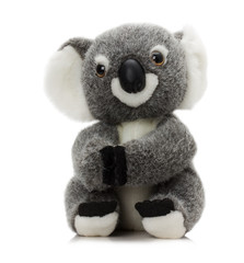 plush koala toy isolated on a white background