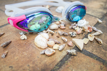 Swim goggles with sea shells after rain