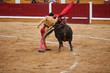 Torero in action - 66885975