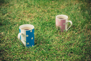Two cups in the grass