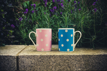 Pink and blue cups outside