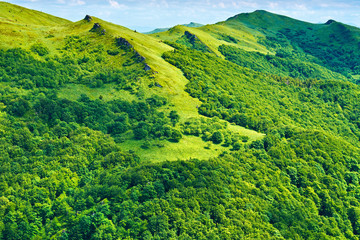 Green mountains sunny background. Carpathians, Poland.