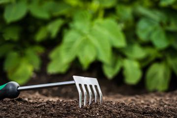 Gardening tool in the soil