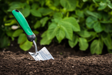 Gardening shovel in the soil