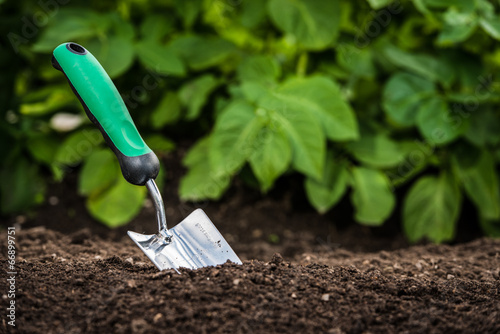 Leinwanddruck Bild Gardening shovel in the soil