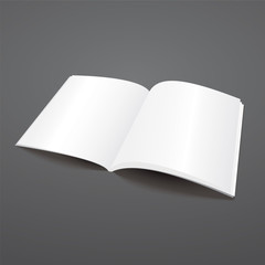 Blank vector open magazine template.