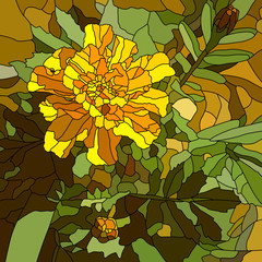 Vector illustration of flower yellow marigold.