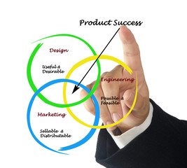 Diagram of product success