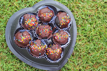 The chocolate balls on green grass