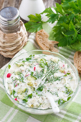 cold soup with fresh vegetables and kefir (okroshka)
