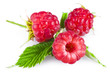 Raspberries with leaves isolated on white