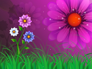 Flowers Background Means Garden Spring And Blooming.