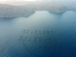 Tuna's cages in the sea.