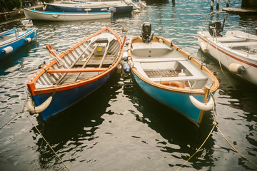 Boats in the harbor of lemon - Garda lake