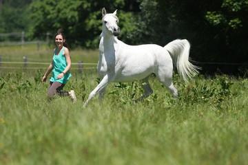 Junge Frau mit stolzem Pferd auf Wiese