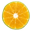 orange or lemon fruit slice