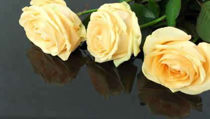 róże na czarnym tle