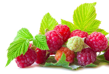 Fresh raspberries isolated on white.