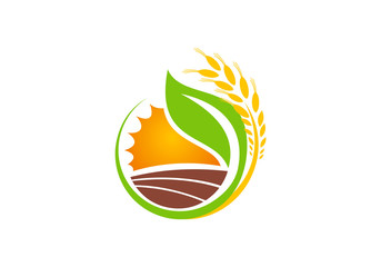 eco wheat landscape nature vector