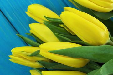 tulipany na niebieskim tle