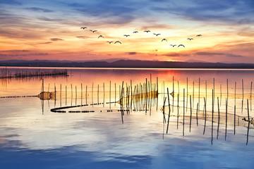 un dia de colores en el lago