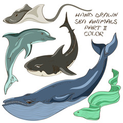 Set of isolated sea animals
