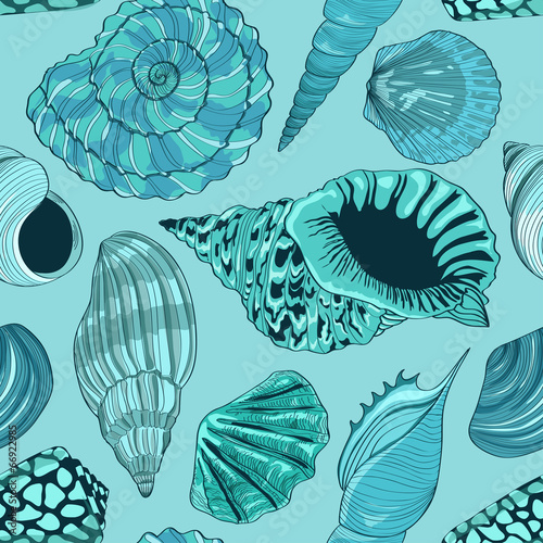 Seamless pattern of seashells - 66922985