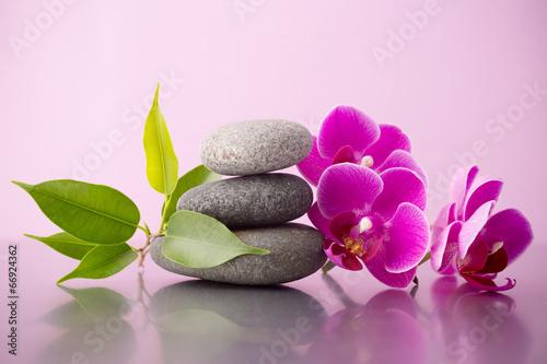 Spa stones. - 66924362