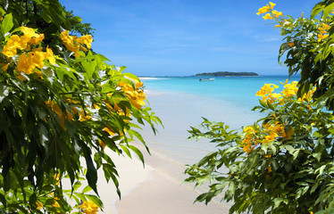 Flowers on sandy beach with tropical island in background
