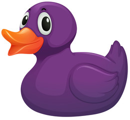 A purple rubber duck