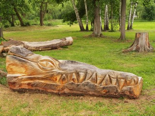 Detail of wooden sculpture dragon head in children playground,