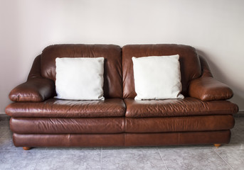 classical luxurious sofa with cushions