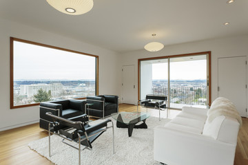 Modern living room with view in daytime