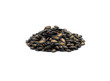Dry Watermalon Seeds on white background
