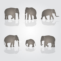 set of vector simple elephants eps10