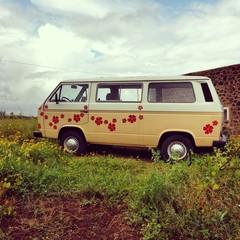 Pulmino hippy