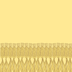 wheat harvest background