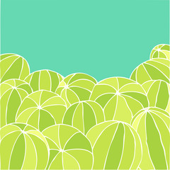 watermelon pattern, vector illustration, hand drawing