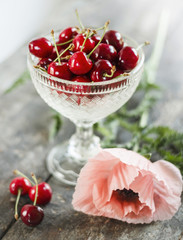 Cherry with poppy flower on wooden table