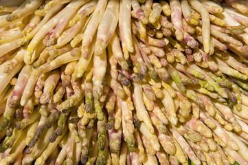 White asparagus in an Italian market.