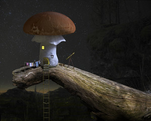 Fairytale mushroom house under the starry night sky.