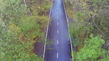 Road with wet  in forest. View from unmanned quadrocopter. poster