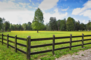 The field fenced with low strong fence